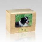 Maple Photo Medium Pet Cremation Urn